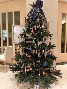 2012年コルドンブルーのクリスマスツリー